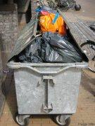 Rica basura